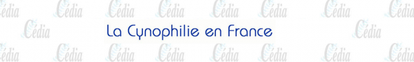 http://cedia.fr/